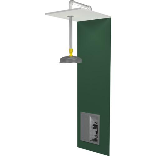 Barrier-Free Eyewash Stations/Showers
